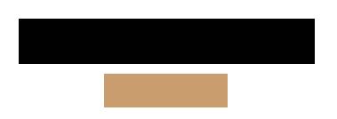 festivalsnobs-logo